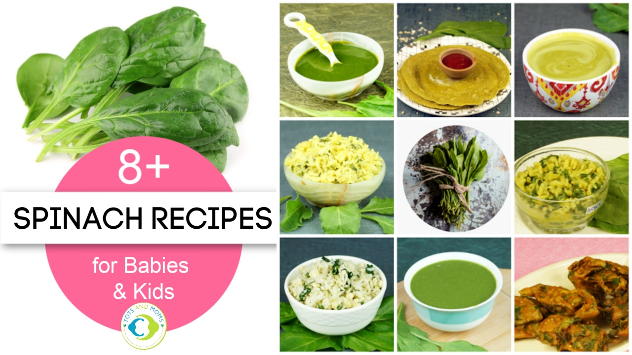 can i give my baby spinach palak when can i give my baby spinach or palak how to feed palak to babies when can i give spinach to babies homemade spinach recipes for kids palak recipes for babies kids toddlers 6 months baby