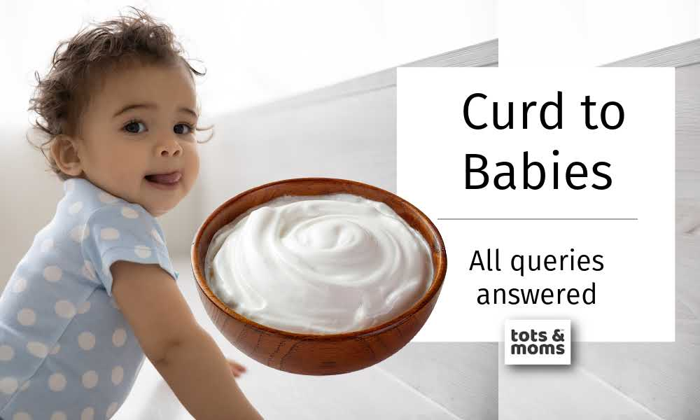curd for babies